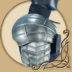 LARP Platemail - Dark Drake Shoulderplates